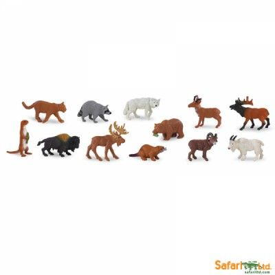 north american wildlife 1