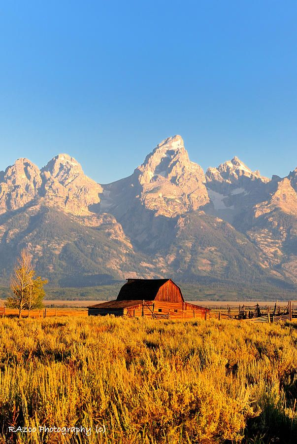✮ Lonley Barn - Grand Tetons: Lonley Barns, Dream Homes, Barns Fine, Dream House, Beauty Place, Barns Inside, Grand Teton National, Barns Farms, Country Barns
