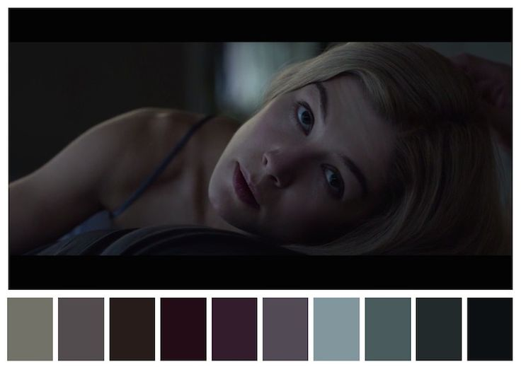 Cinema Palettes: Color palettes from famous movies - Gone Girl