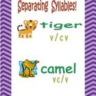 Syllable division of words is a key component to the word decoding process. As students advance into higher level reading material, the number of m...