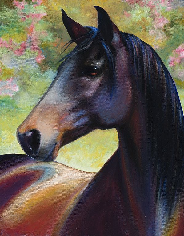 Original painting, Majestic, in acrylic on canvas. 11x14 inches. Gallery wrapped canvas with painted sides, ready to hang with or without frame.Moonstruck Meadows in Washington shared photos with me of their late Jerezano. I just loved this photo of him because of his 'majestic' look. This is my interpretation of that photo.