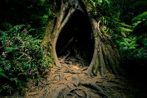 The Hollow (That Which Fills the Emptiness) A haunting tale of love lost, and the music that then came calling, by Luke Barker at www.tronorphic.com.