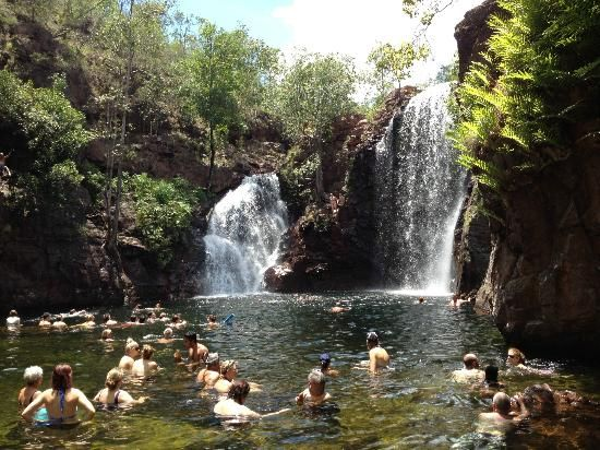 Litchfield National Park: At the bottom of Florence falls Batchelor,Northern Territory, Australia