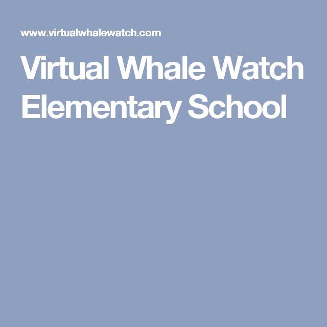 Virtual Whale Watch Elementary School