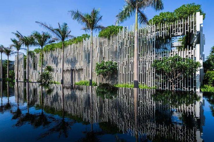 idée de jardin vertical avec un bassin de jardin et palmiers