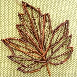 Reproduce the feel of an autumn landscape and fall foliage by using leaves to inspire your home decorating projects. The links wrap around and around on this one, the idea of using a leaf as a template to glue twigs into that shape is effective