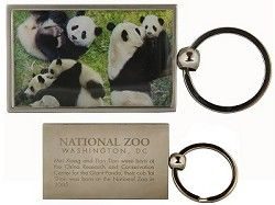 Giant Panda Cam - National Zoo Smithsonian = a link to a live webcam for peeking in on the pandas! Tres cute!