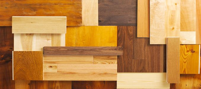 Types of wood species for your cabinets wood species for Types of wood kitchen cabinets