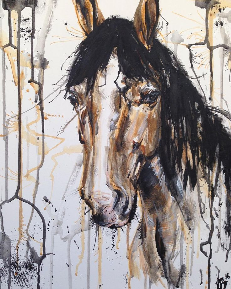 www.kasiabukowska.com acrylic on canvas abstract equine art  horse painting horse portrait