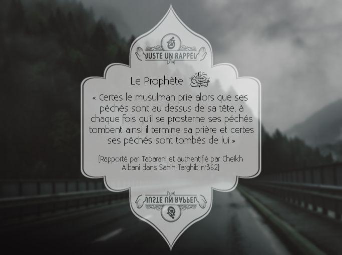 le Prophète ﷺ a dit: « Certes le musulman prie alors que ses péchés sont au dessus de sa tête, à chaque fois qu'il se prosterne ses péchés tombent ainsi il termine sa prière et certes ses péchés sont tombés de lui ».