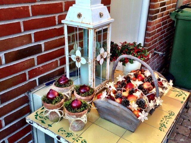 25. november - Så starter julen udendørs :) Trækurv med æbler, kogler og isblomst-lys.  Potter med mos og rødløg i al simpelhed.