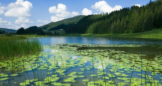 Lac de Lamoura dans le Haut-Jura   Jura, France   Photo Stéphane Godin/Jura Tourisme   #JuraTourisme