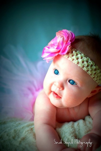 6 month baby picture www facebook com sarahshepichphotography