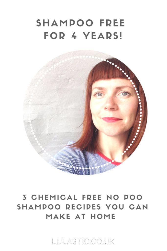 No Poo Shampoo : 3 Homemade Chemical Free Shampoo recipes to try at home - Lulastic and the Hippyshake
