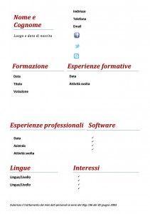 Curriculum Vitae - Modello 02 : Modello Curriculum
