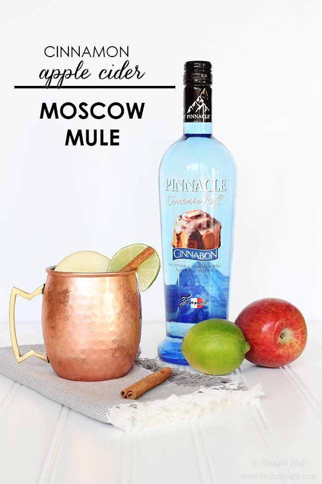 Cinnamon Apple Cider Moscow Mule by A Blissful Nest #PinnacleCocktailClub #PinnacleVodka #ad