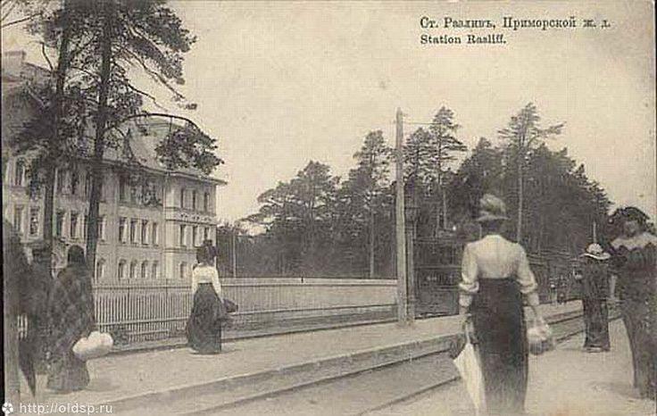 """Фотография - Станция """"Разлив"""" Приморской железной дороги - Фотографии старого Петербурга"""