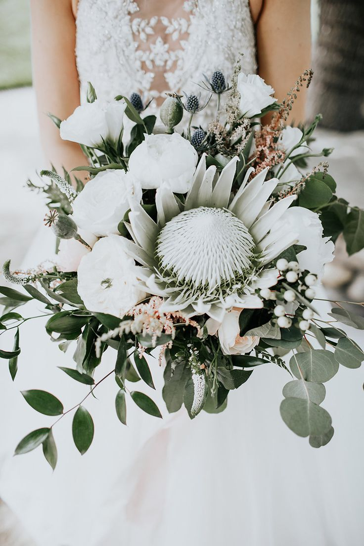 king protea bouquets - photo by Alex Lasota Photography http://ruffledblog.com/modern-rustic-winery-wedding-at-basel-cellars