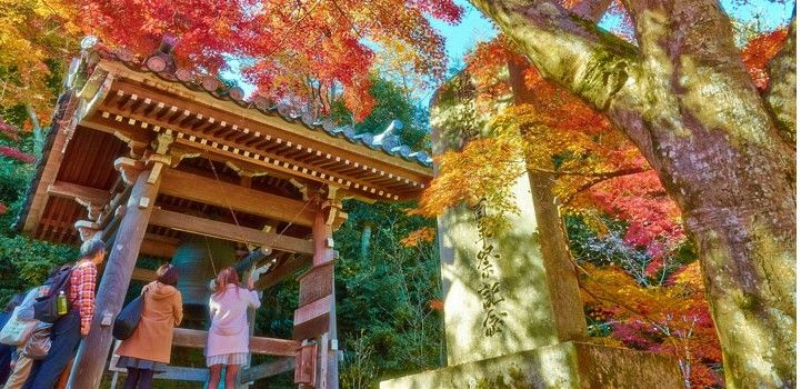 Japan Honeymoon Tour Package- Romantic Honeymoon in Japan