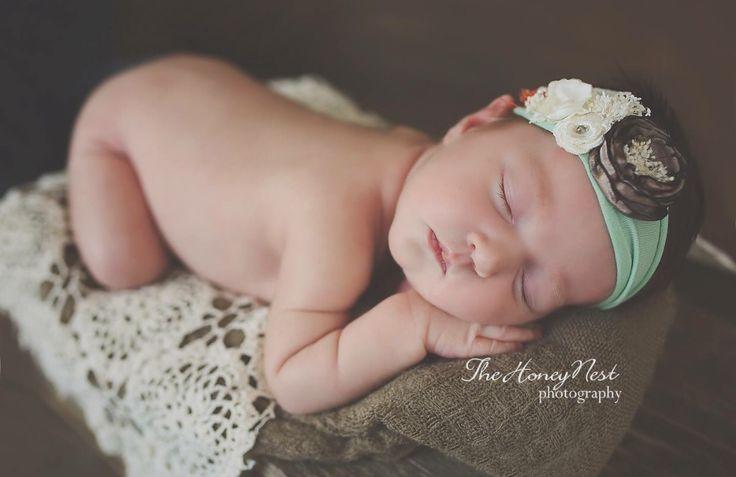 The honey nest newborn photography johnson city tn photographer