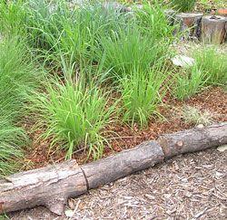 Logs as garden border