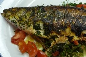 Fish Heaven in Egypt | Clifford A. Wright. Samak mishwi, grilled gray mullet in Marsa Matruh, Egypt