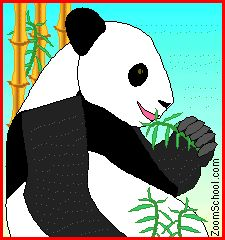 Panda - Enchanted Learning Software