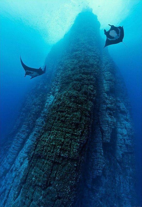 Montañas submarinas, Socorro Island, Mexico