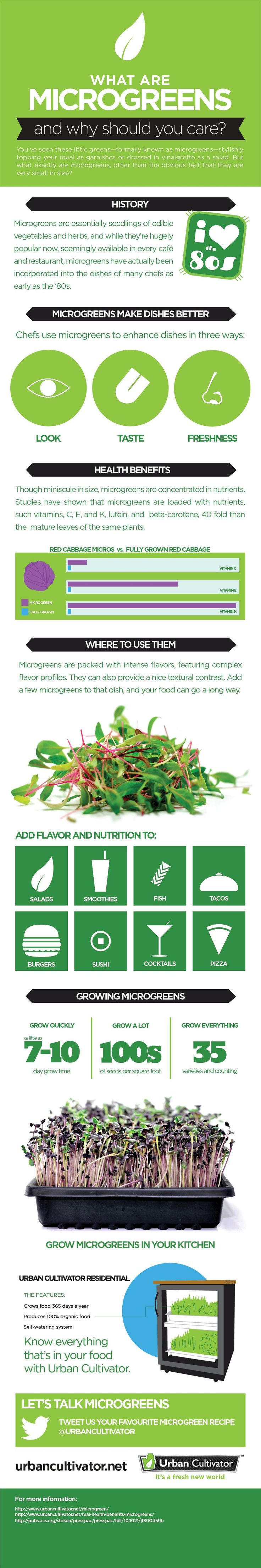 300 best images about aquaponic hydroponic on pinterest for Best growing medium for microgreens