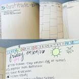 $3 from Walmart... I live in a small town and couldn't find a dot grid notebook. - Deann S.