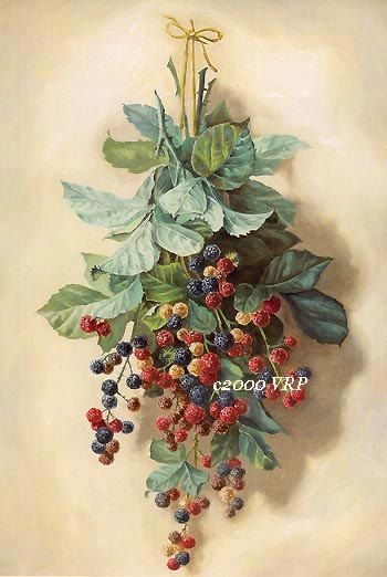 Print FREE SHIP Fruit Print French by VictorianRosePrints on Etsy, $11.99