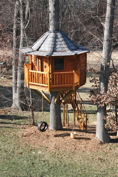 Tree House Plans For Adults 112 best treehouse images on pinterest   treehouse ideas