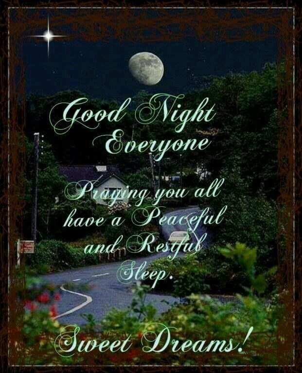 Good Night Everyone, Sweet Dreams! good night good night quotes sweet dreams good night images good night blessings