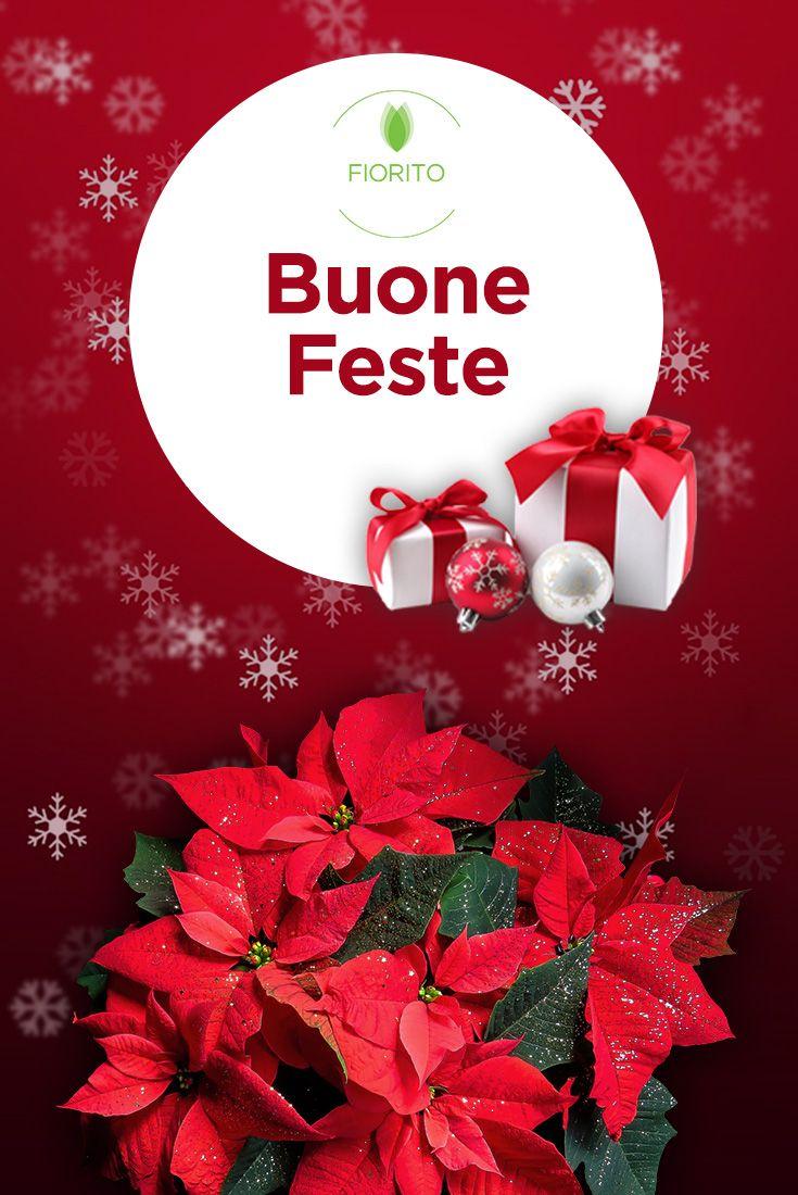 Il team di Fiorito augura a tutti un felice Natale! #Fiorito #fiori #Natale #Natale2016 #buonefeste