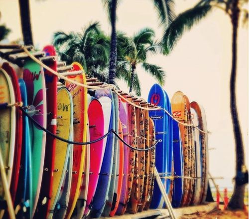 Surfing.Surf Girls, Cant Wait, Surf Up, Oahu Hawaii, Surfboard, Colors, Summer Vibes, Beach, Surf Boards