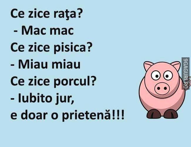 Porcul tot porc rămâne  Îți place? Aruncă Like & Share la pagină