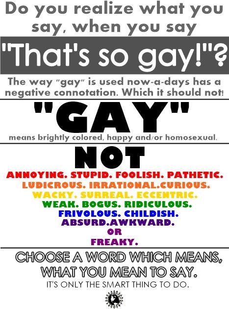 Dont Say Thats So Gay 57