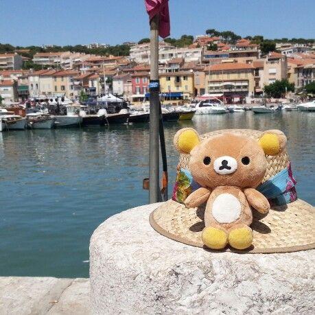 Travel buddy : Kume in Cassis