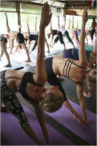 Thailand Yoga & Detox Retreat Visit the Yoga retreat in Koh Phangan, Thailand. We offer Detox programs, Yoga retreats, Meditation and much more.