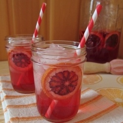 Blood Orange and Campari Sangria by ArcticGarden