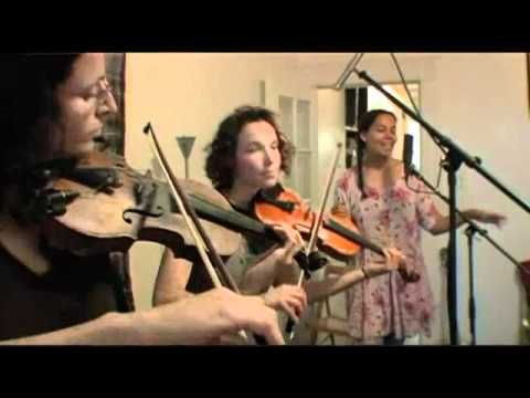 Smooth! Knockin - Carolina Chocolate Drops and the Luminescent Orchestrii