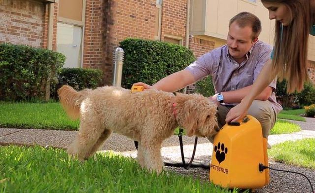 20 Most Innovative New Dog Products Pets Dogs Collapsible Dog