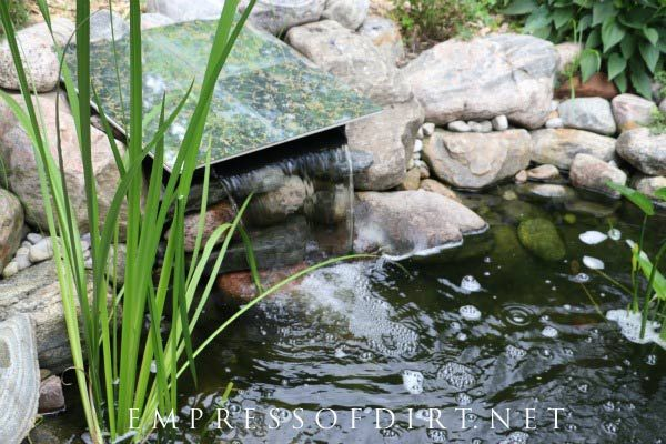 How To Hide A Pond Waterfall Spillway Box Pond Waterfall Diy Pond Waterfall Floating Pond Plants