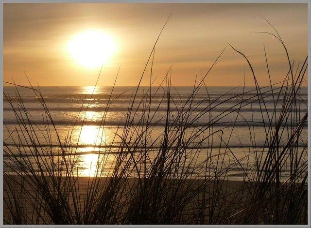 Photo : Coucher de soleil depuis la dune (Juliane),  Mers et plages, Couchers de soleil, Contre-jour, Plouharnel. Toutes les photos de Juliane PHILIPPOT sur L'Internaute