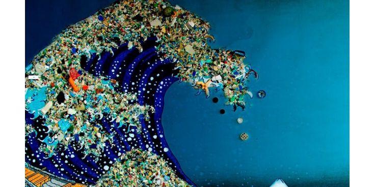 La pollution plastique est partout sur Terre, des résidus retrouvés dans les fonds marins
