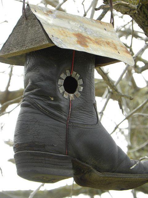 Photo idea for a bird house...