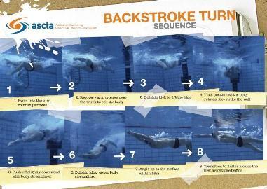 Backstroke Turn Sequence Poster $11