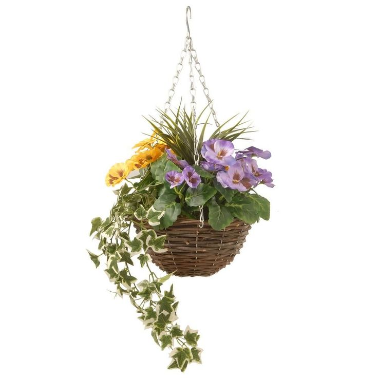 National tree company 14 in pansy and ivy hanging basket