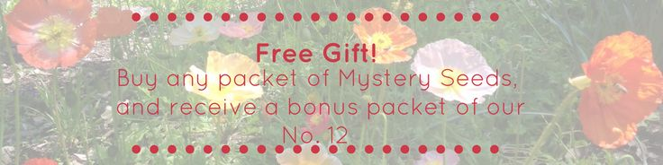 Promo on now! Buy any Mystery Seeds and we'll throw in a packet of our special 'No.12' Flower mix! #mysteryseeds #mysteryseedsau #etsy