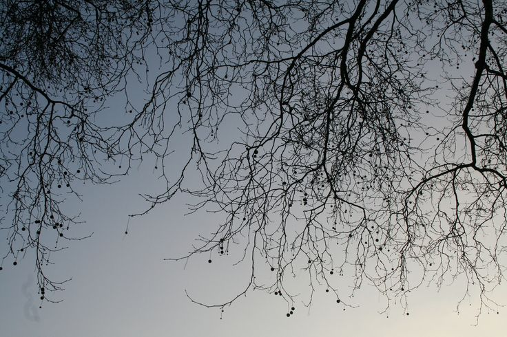 London March 2011 002 | by eskimostephie